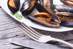 Mussels with parsley. On rustic wooden background Stock Photo