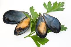 mussels pietruszka dwa obraz stock
