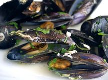 Mussels on the plate Royalty Free Stock Photos