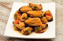 Mussels in  a plate Royalty Free Stock Photos