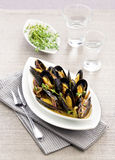 Mussels on a plate. With thyme Stock Photos