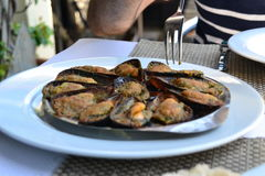 Mussels in a plate Stock Photography