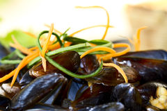 Mussels on the plate. Delicious dish with mussels and carrot Royalty Free Stock Photo