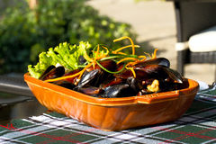 Mussels on the plate. Delicious tasty dish with mussels Royalty Free Stock Image
