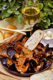 Mussels on plate Stock Images