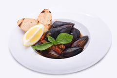 Mussels in a plate in tomato sauce with lemon and toast on a white plate royalty free stock photo