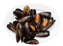 Mussels on porcelain plate with clipping path Royalty Free Stock Images