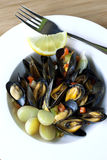 Mussels Royalty Free Stock Image