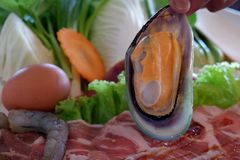 Mussels that are prepared to cook. royalty free stock photos