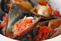 Mussels Provencal  Stock Image