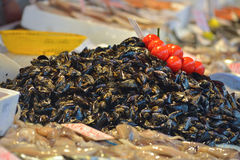 Mussels in the public fish market of Syracuse, Sicily Royalty Free Stock Image