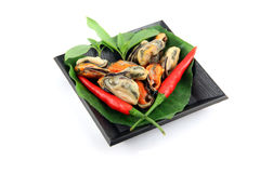 Mussels and red paprika in the black dish. Royalty Free Stock Photo