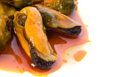 Mussels in red sauce Stock Images