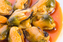 Mussels in red sauce Royalty Free Stock Image