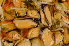 Mussels salad Stock Image