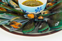 Mussels with sauce tasty Stock Photo