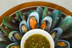 Mussels with sauce tasty Stock Photography