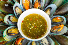 Mussels with sauce tasty Royalty Free Stock Images