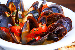 Mussels saute Stock Image