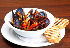 Mussels saute (ragout) Royalty Free Stock Image