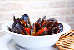 Mussels saute (ragout) Royalty Free Stock Photography