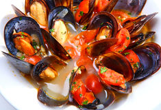 Mussels Saute (ragout) Stock Image