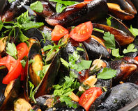 Mussels saute (ragout) Royalty Free Stock Photo