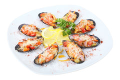 Mussels in sea salt Stock Images