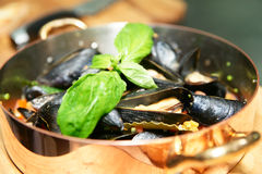 Mussels served in copper pan Royalty Free Stock Images