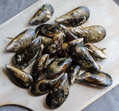 Mussels in the shell Royalty Free Stock Image