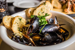 Mussels in shell fried with garlic toasts Stock Image