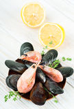 Mussels in the shell and shrimp with lemon Royalty Free Stock Images