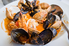Mussels in shell with shrimps Royalty Free Stock Photos