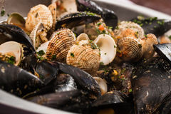Mussels and shellfish Royalty Free Stock Photo
