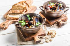 Mussels in shells with garlic sauce served with bread Stock Photography