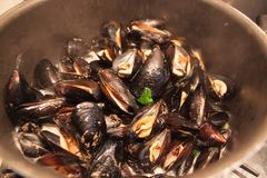 Mussels in shells in Italian cuisine stock photography