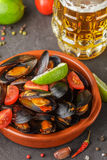 Mussels in shells with tomatoes and spicy sauce Royalty Free Stock Images
