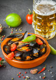 Mussels in shells with tomatoes and spicy sauce Royalty Free Stock Photos