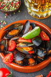 Mussels in shells with tomatoes and spicy sauce Stock Photography