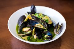 Mussels in shells in a white bowl with a green sauce on a dining table. royalty free stock photography