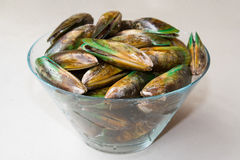 Mussels Side view Royalty Free Stock Image