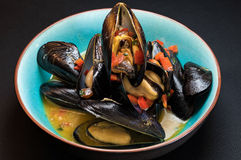 Mussels in steam Stock Photography