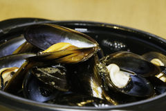 Mussels in strict close up Royalty Free Stock Photos