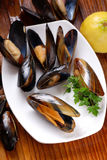 Mussels on the table Royalty Free Stock Photos