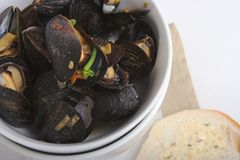 Mussels and toast. Bowl of cooked mussels stock image