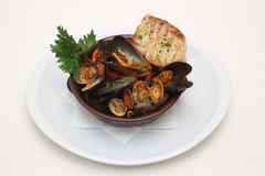 Mussels with tomato juice and toast Royalty Free Stock Photos