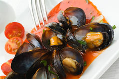 Mussels in tomato sauce Royalty Free Stock Photo