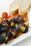 Mussels in tomato sauce Stock Images