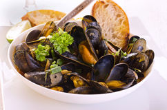 Mussels in Tomato Sauce Royalty Free Stock Photos