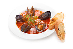 Mussels with tomato sauce and croutons Stock Photo